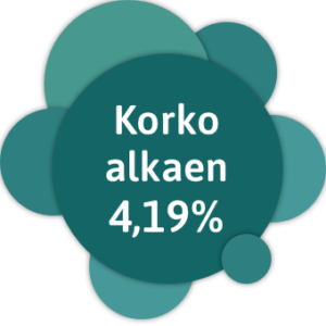Yhdistelylainan korko alkaen 4,19 %